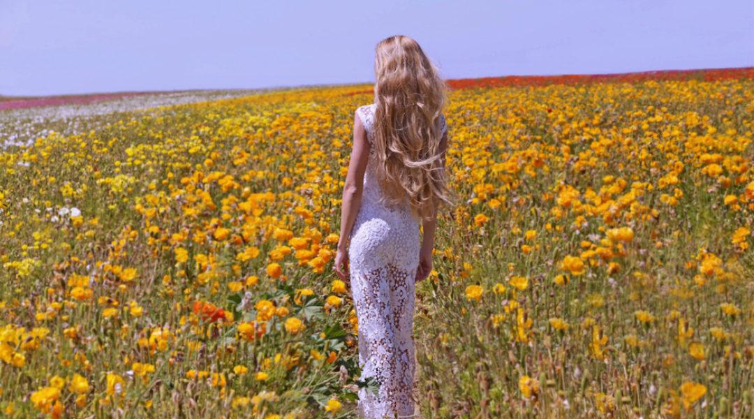 flower_IMG